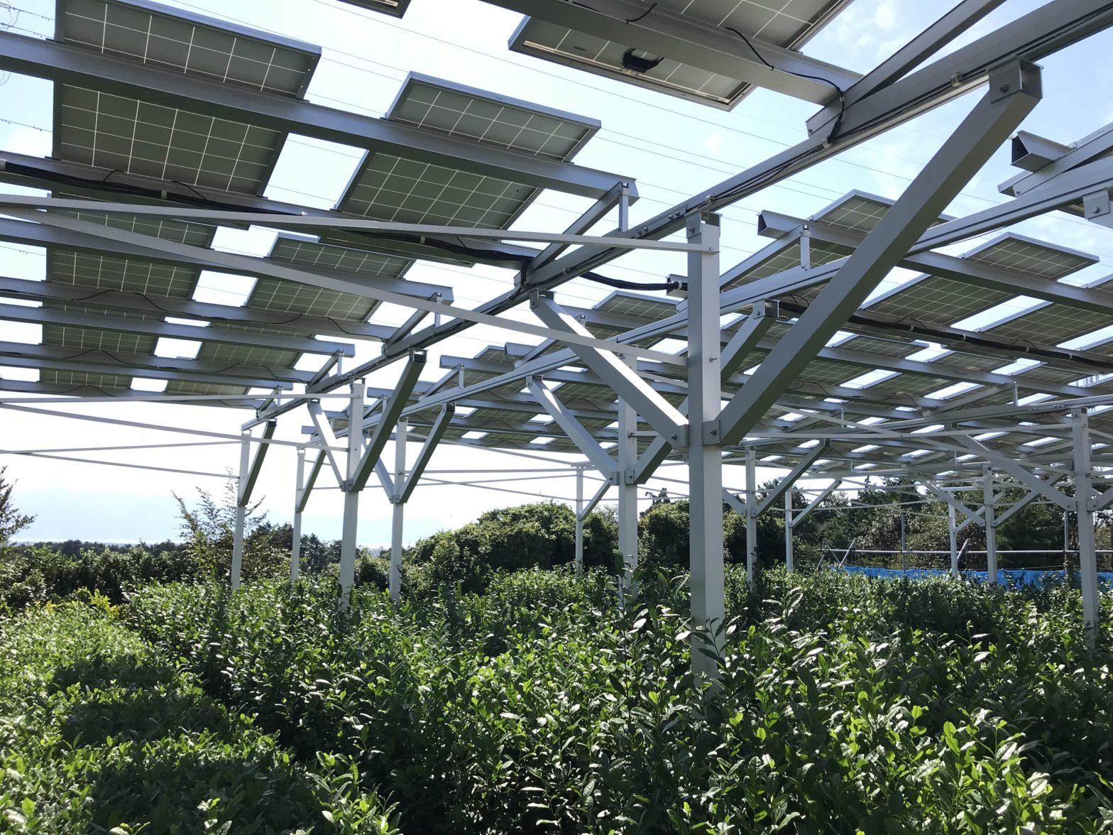2020年度のソーラーシェアリングFIT認定条件農地転用10年許可について